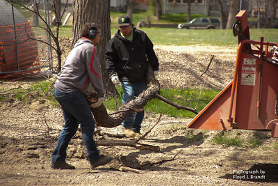 Havre Daily News/Floyd Brandt  Havre city workers Alex Hanson and Nick Peet at 4th Avenue and 7th Street chipping limbs and fallen trees  Tuesday. Cleanup that started before Easter around town.
