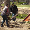 Havre Daily News/Floyd Brandt<br /> <br /> Havre city workers Alex Hanson and Nick Peet at 4th Avenue and 7th Street chipping limbs and fallen trees  Tuesday. Cleanup that started before Easter around town.