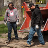 Havre Daily News/Floyd Brandt<br /> <br /> Havre city workers Alex Hanson and Nick Peet at 4th Avenue and 7th Street chipping limbs and fallen trees  Tuesday.