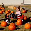 Havre Daily News/Floyd Brandt<br /> <br /> Taking a wagon ride for two year old Aurora Scovel through the pumpkin patch at Saint Jude's School  Pumpkin Patch  Saturday Oct 21, 2017 Havre, Montana