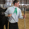 Havre Daily News / Floyd Brandt<br /> <br /> Ross Reed 4H / FFA Senior Beef Showing Blain County Fair Saturday, 1001lbs