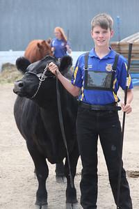 Havre Daily News / Floyd Brandt   4H / FFA Senior Beef Showing Blain County Fair Saturday, Jase Pursley and Blue Ribbon winner Ceasar