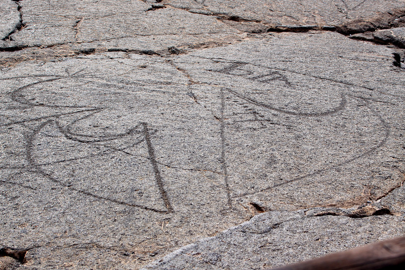 A group of Pe'a - canoe sails. There are more than 100 similar petroglyps in this field.No canoe drawing has been found as of 2008.