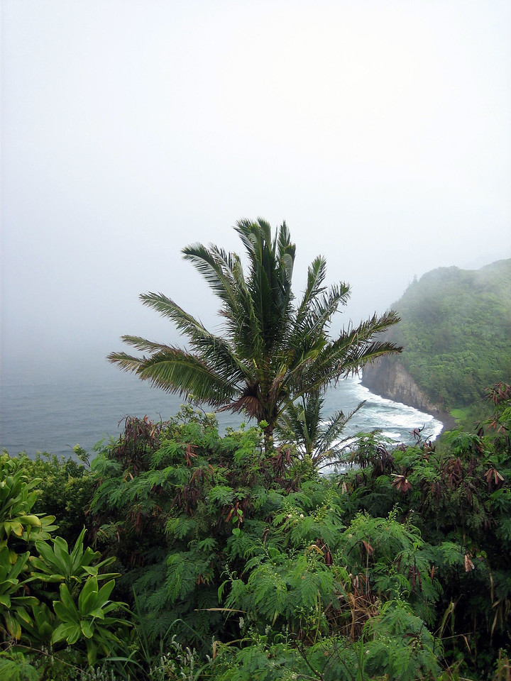 Pololu Valley Lookout.