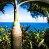 Hawaii - Fall 2014
