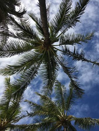 Sans Souci park, Waikiki