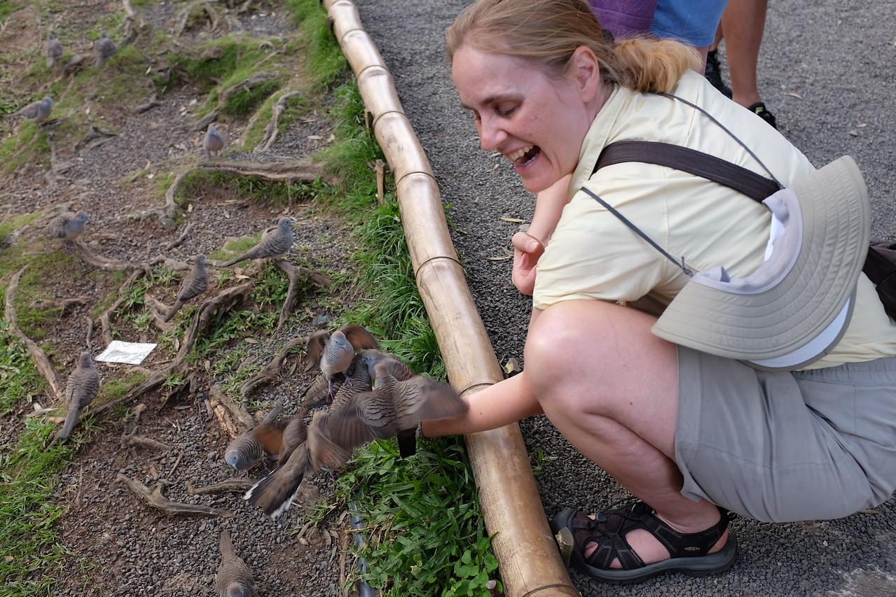 Jennifer feeding zebra doves