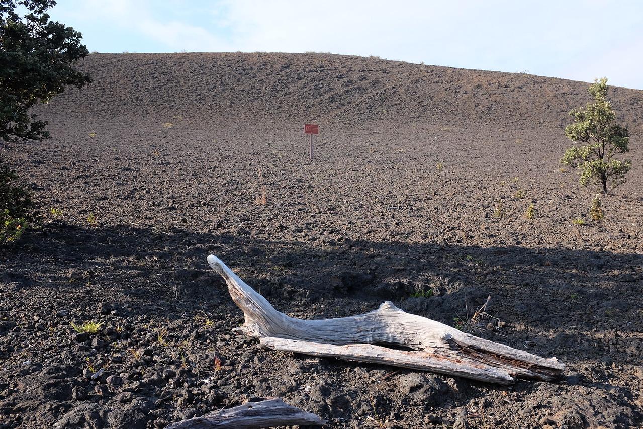 Kilauea Caldera, Hawaii Volcanoes National Park