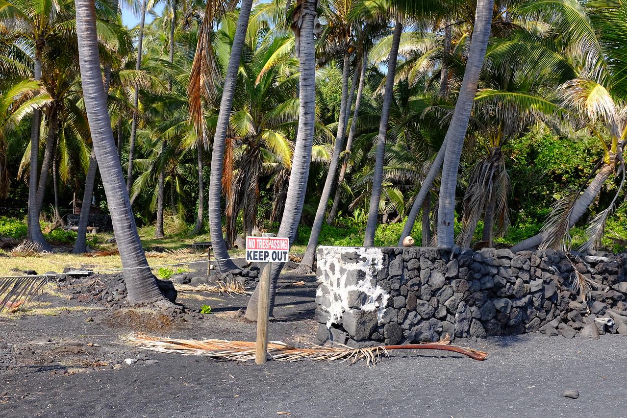 Next to Punalu'u Beach