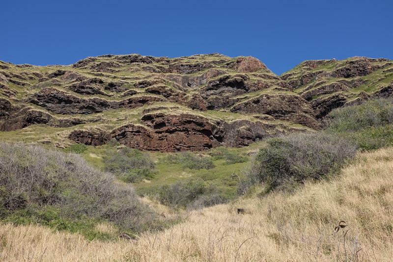 Cliffs, Ka'ena Point