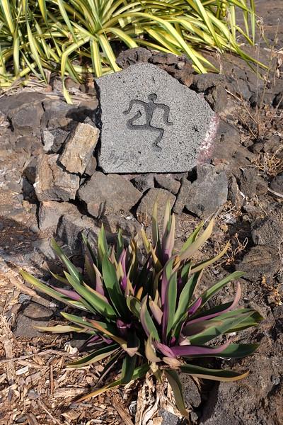 Modern petroglyph, running path, Old Airport Park, Kailua-Kona
