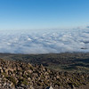 Mauna Kea above the clouds