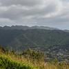 Honolulu Suburbs from Mount Tantalus