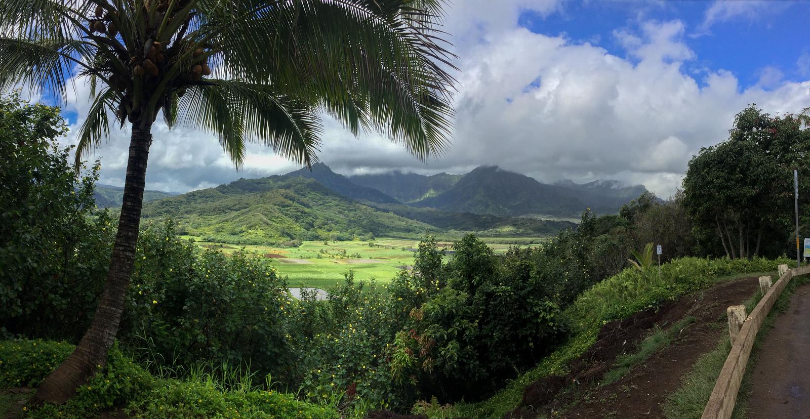 Hawaii 2017; Kauai. Drive south to Po'ipu, Princeville, Kilauea, and Wailua