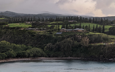 Along the Plantation Course at Kapalua