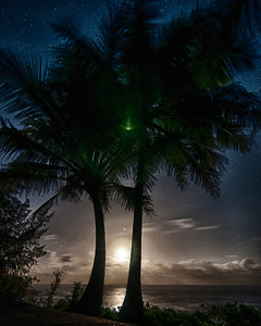 HDR Palm trees overlooking the ocean
