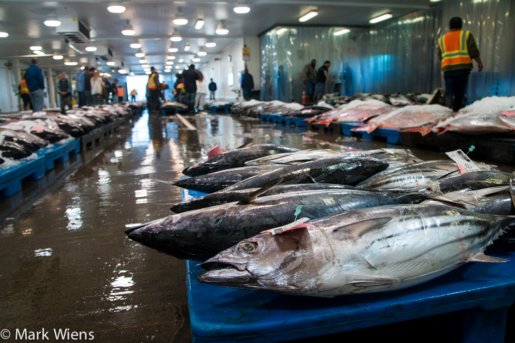 Organized and clean fish market in Honolulu