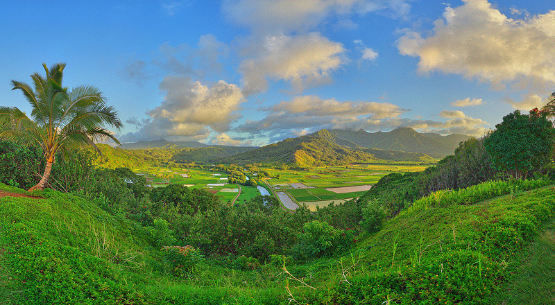 Hanalei Lookout, Kauai, HI