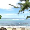"""North Shore, Val's Reef, Sunset Beach, Oahu, Hawaii - High Surf Advisory :) <br /> <a href=""""https://youtu.be/rPKdGFUegUw"""">https://youtu.be/rPKdGFUegUw</a>"""