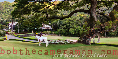 IMG_7929-Rick Wall-Oahu Country Club-Event Of The Year-Castle Resorts and Hotels-Oahu-July 2013-Edit-3