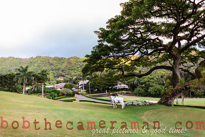 IMG_7929-Rick Wall-Oahu Country Club-Event Of The Year-Castle Resorts and Hotels-Oahu-July 2013-Edit