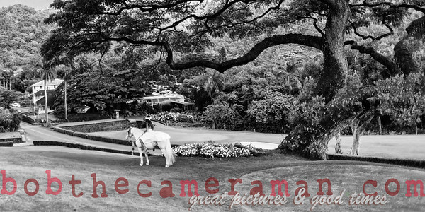 IMG_7929-Rick Wall-Oahu Country Club-Event Of The Year-Castle Resorts and Hotels-Oahu-July 2013-Edit-Edit