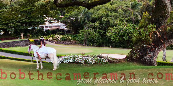IMG_7929-Rick Wall-Oahu Country Club-Event Of The Year-Castle Resorts and Hotels-Oahu-July 2013-Edit-4