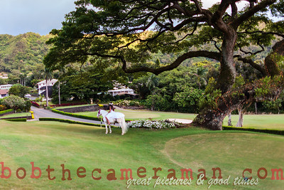 IMG_7929-Rick Wall-Oahu Country Club-Event Of The Year-Castle Resorts and Hotels-Oahu-July 2013-Edit-2