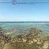 Puako Shoreline