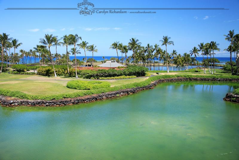Mauna Lani Ankaline Ponds