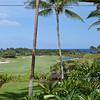 Hawaii Island Golf