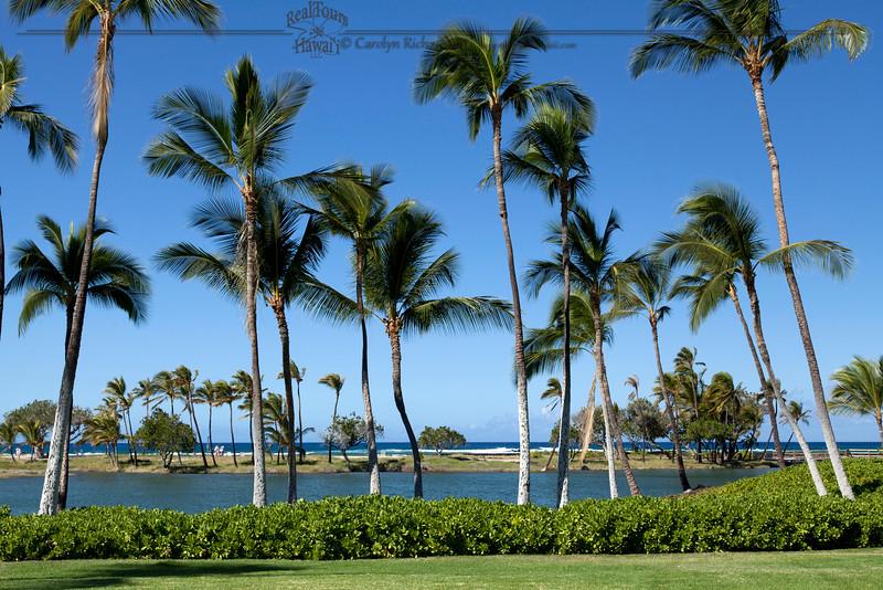 Ankaline Ponds Mauna Lani Resort