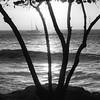 Paul Herholz Photography