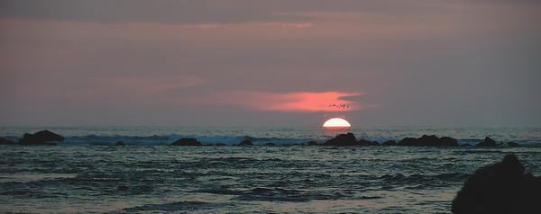 Kawaihae Sunset Birds