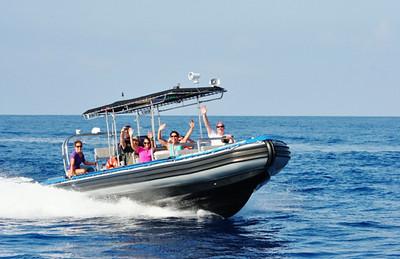 5214 Whale Watch (Raft) - Kamanu Charters