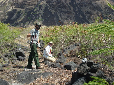 Wilderness Volunteers: 2015 Hawaii Volcanoes National Park Service Trip