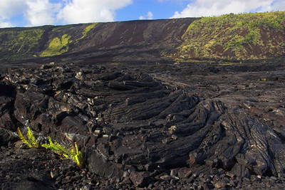Hillside lava flow. Big Island.