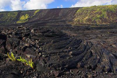 Hillside lava flow. Big Island.