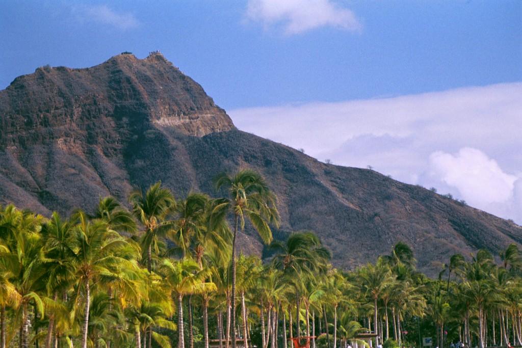 Aloha! Diamond Head crater, Island of Oah'u. 2001.