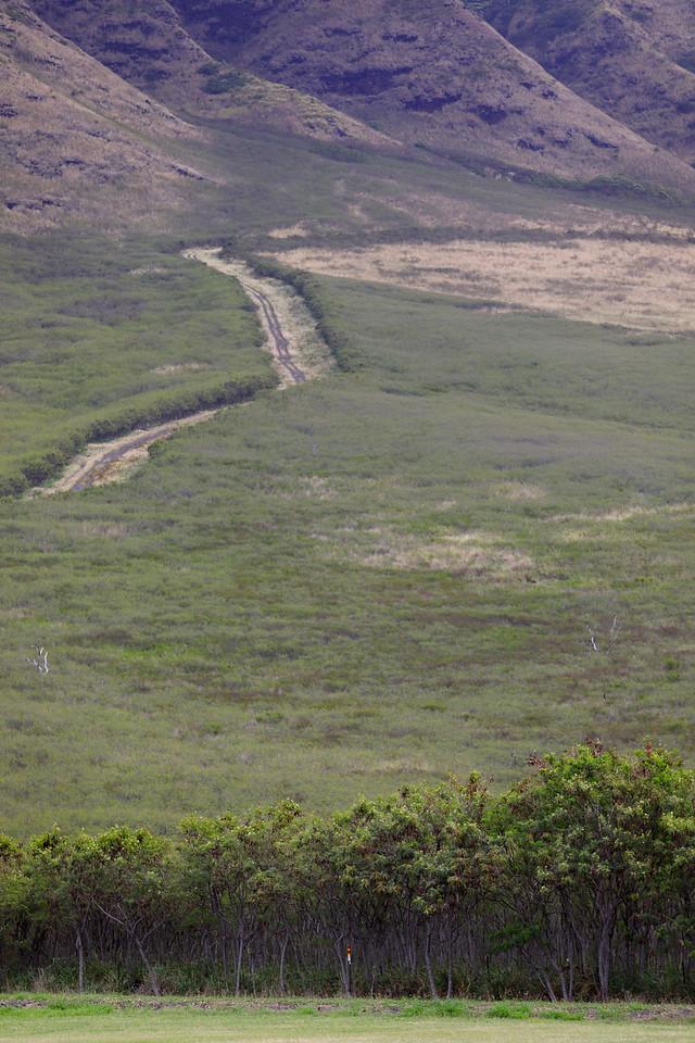 Mountain landscape in Oahu Hawaii