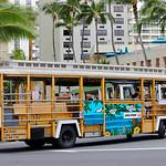 Tour bus in Waikiki Beach Honolulu Hawaii