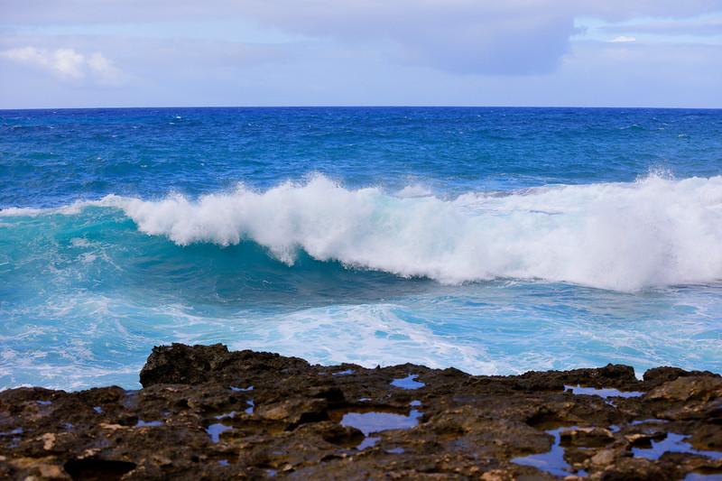 Pacific ocean waves crashing on rocks