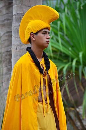 Hawn  gold cloak & hat 371