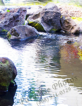 rocks & water hilton 0912 5070