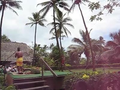 Polynesian Cultural Center Tree Climber Mini Movie