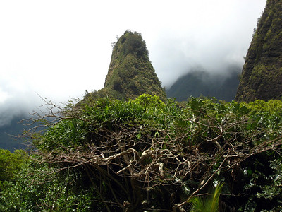 Iao Needle State Park