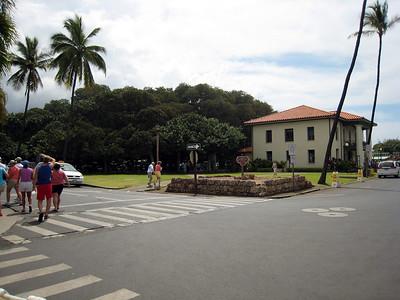 Lahaina - Banyan Tree