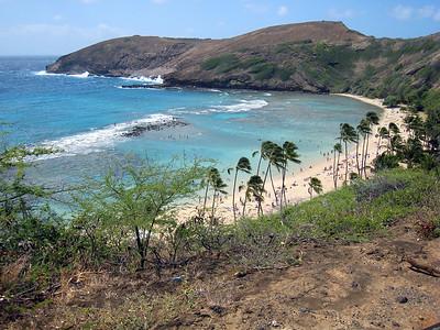 Oahu Natural Highlights Tour