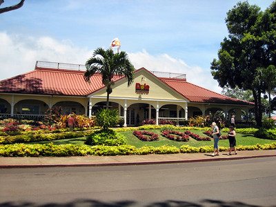 01 Dole Pineapple Plantation
