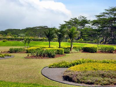 19 Dole Pineapple Plantation